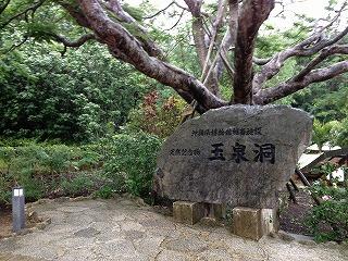 沖縄 首里城のあとは国際通りでしょ!