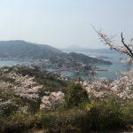 音戸の瀬戸公園で花見。桜満開につき人多し。