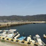 江田島の大君漁港は釣り場として最強だと思った。