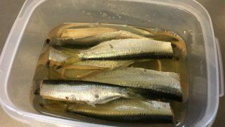 釣り人によるママカリの酢漬けの作り方。
