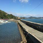 因島 鏡浦港でライトゲーム、ショアジギング、エギングと投げ倒した結果…