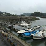 岡山県笠岡市の夏目港でシーバスが釣れました。