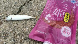 急な回遊魚に対応するためにマルキューのアミ姫をバッカンに忍ばせておく。